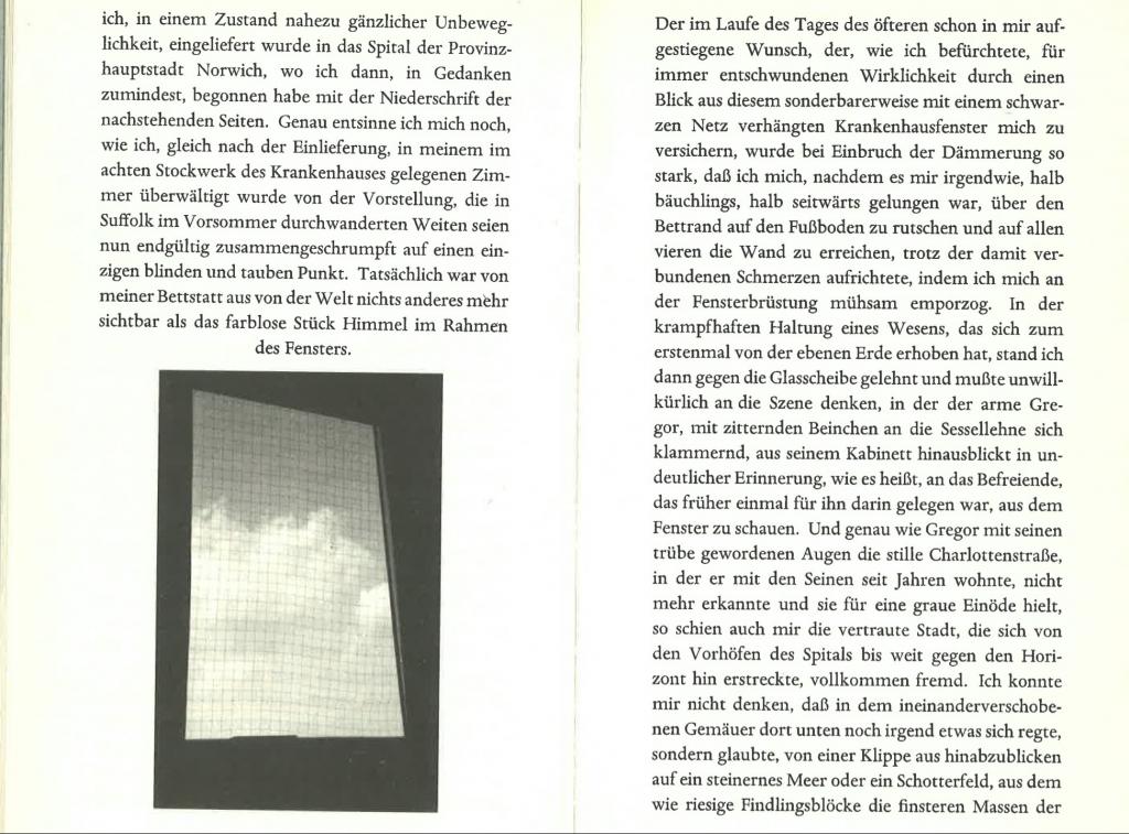 rings-window-sebald-1